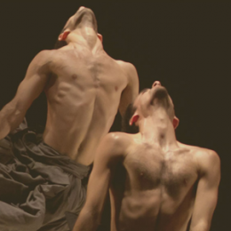If At All - Kibbutz Contemporary Dance Company - Bilety na koncert